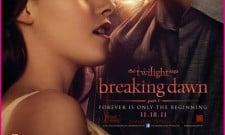 The Twilight Saga: Breaking Dawn – Part 1 Review