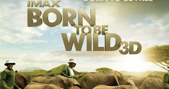 Born To Be Wild 3D Trailer
