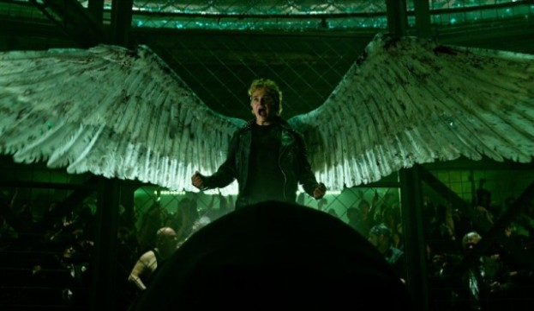 angel-image-header