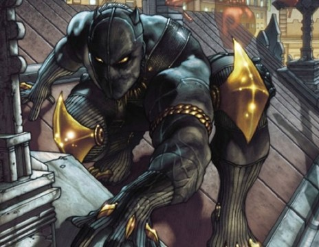 %name Stan Lee Kind Of Confirms Black Panther Movie