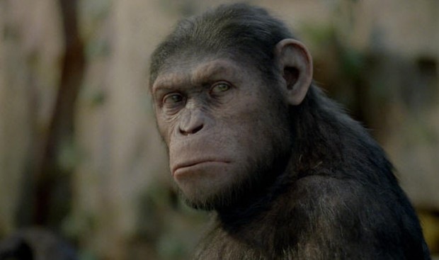 Andy Serkis Signs On For Planet Of The Apes Sequel