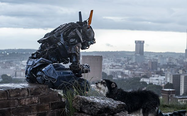 Chappie Director Neill Blomkamp Plays Down Talk Of Sequel