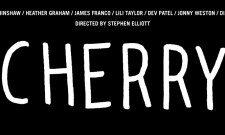 Stephen Elliot's Cherry Starring James Franco Gets A September 21st Release