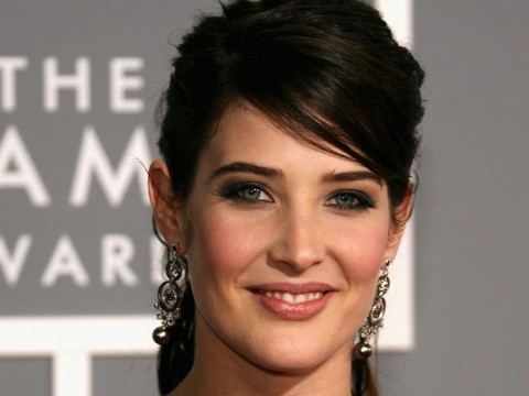Cobie Smulders Signs On For Two New Film Roles