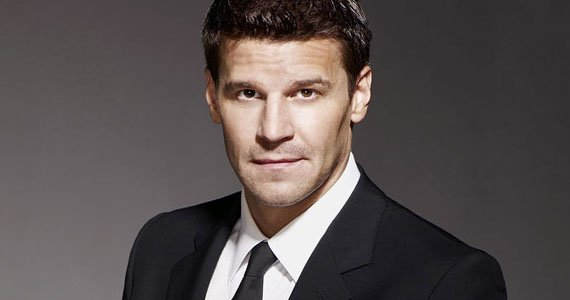 David Boreanaz Wants To Play A Cowboy On Downton Abbey