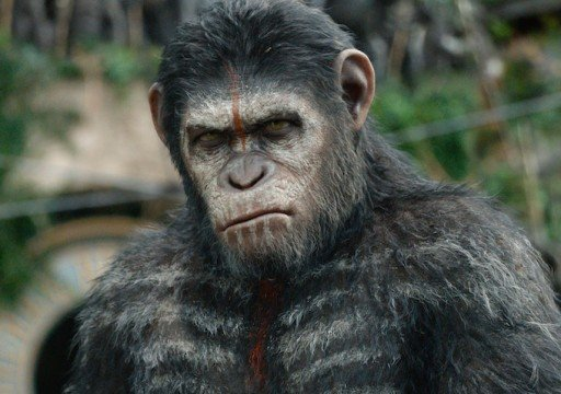 Humans And Apes Face Off In New Clip From Dawn Of The Planet Of The Apes