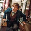 Get The Lowdown On Fantastic Beasts And Where To Find Them's Story