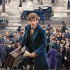 Latest Fantastic Beasts And Where To Find Them Still Sends Eddie Redmayne On A Magical Mission