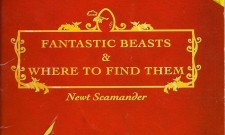Are The WB Event Pics Sequels To Fantastic Beasts And Where To Find Them?
