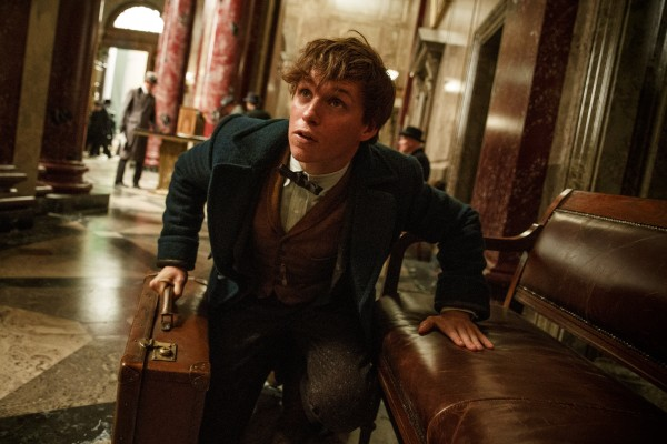 Fantastic Beasts And Where To Find Them Producer Cites Goblet Of Fire As Inspiration