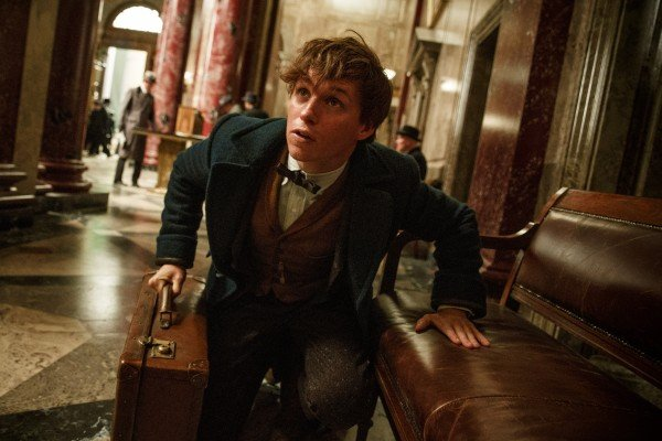 fantastic-beasts-and-where-to-find-them-eddie-redmayne1-600x400