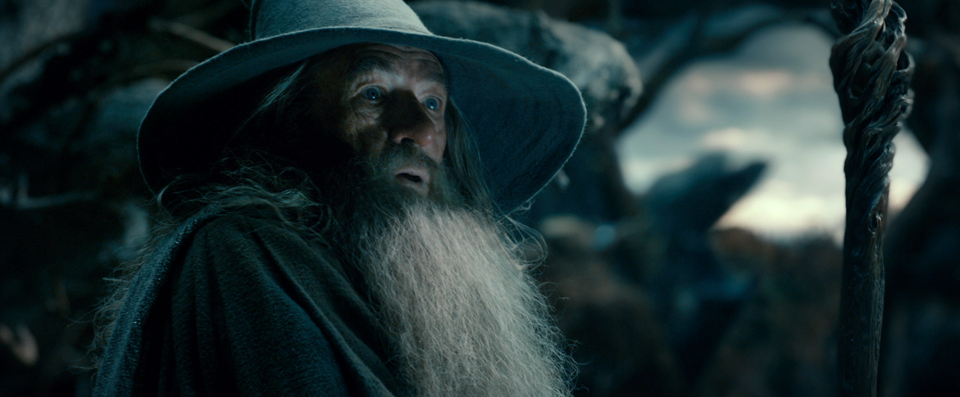 hobbit desolation smaug gandalf The Hobbit: The Desolation Of Smaug Gallery