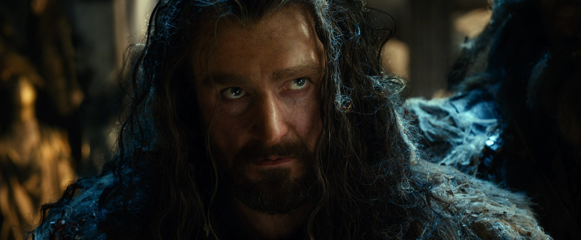 hobbit desolation smaug thorin The Hobbit: The Desolation Of Smaug Gallery