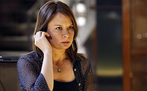 Mary Lynn Rajskub what has been in