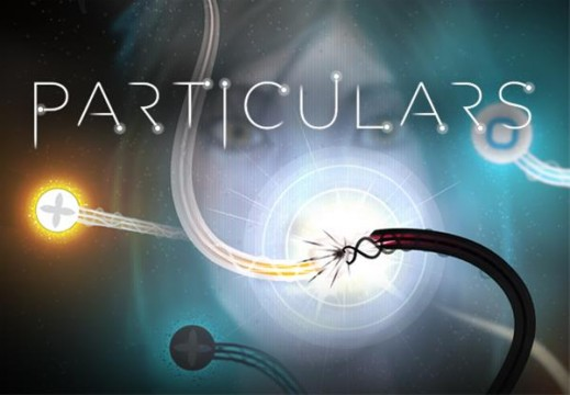 Particulars Review