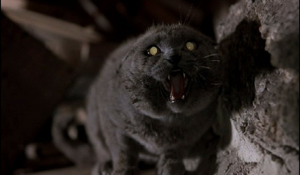 Juan Carlos Fresnadillo To Direct Pet Sematary Remake