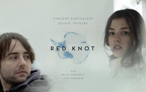 Red Knot Review