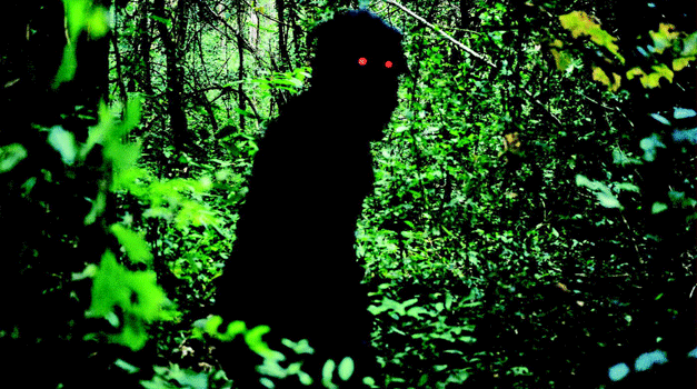 Uncle Boonmee Who Can Recall His Past Lives Review