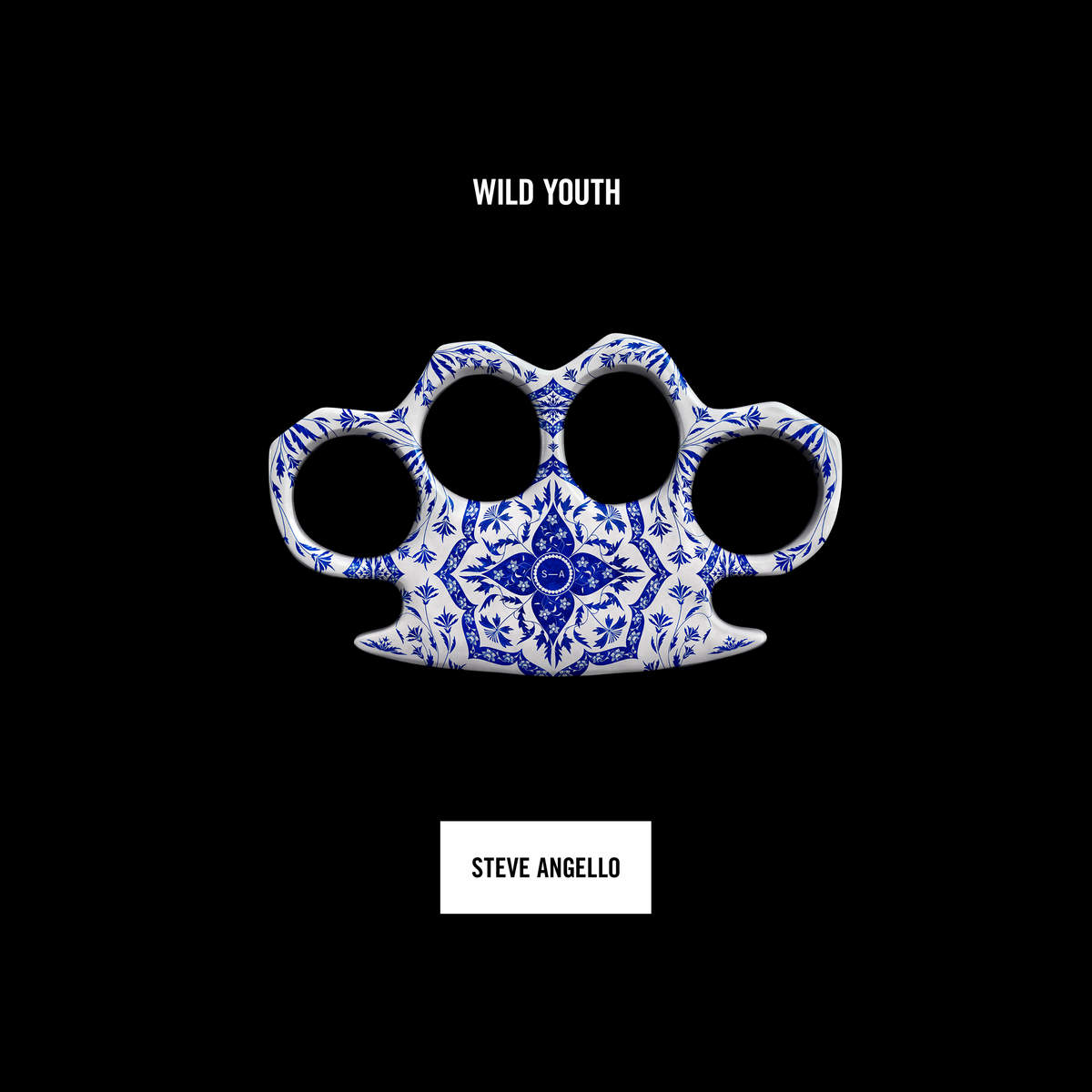 Steve Angello - Wild Youth Chapter 1 Review