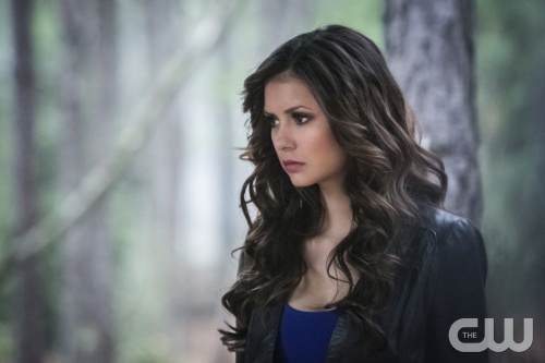 "The Vampire Diaries Review: ""The Walking Dead"" (Season 4, Episode 22)"