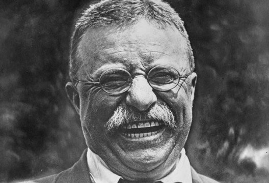 theodore roosevelt laughing 528x360 5 Presidents Who Deserve Their Own Film