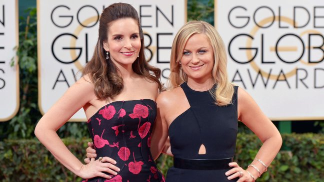 Amy Poehler Joins Tina Fey In The Nest