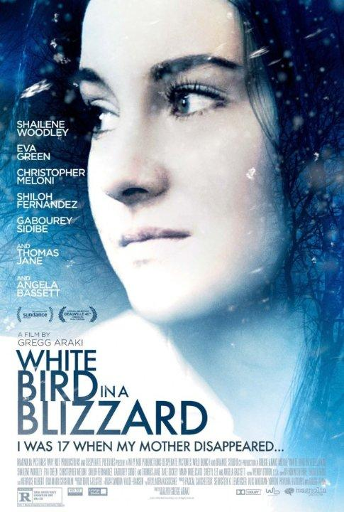 White Bird In A Blizzard Review